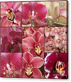 Collage Orchids 17 - Elena Yakubovich Acrylic Print