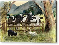 Country Characters Acrylic Print by Trudi Simmonds