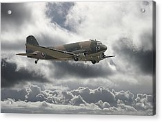 Dc3 Dakota   Workhorse Acrylic Print by Pat Speirs