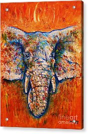 Elephant Acrylic Print by Anastasis  Anastasi