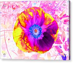 Fervor And Passion Flower 2 Acrylic Print by Kenneth James