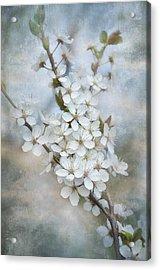 Flowering Tree Acrylic Print by Gynt Art