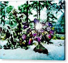 Gem Tree In Snow Acrylic Print by Rick Todaro