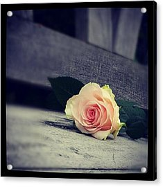 Gray In Romantik Acrylic Print