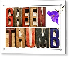 Green Thumb Acrylic Print by Donald  Erickson