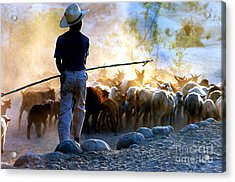 Herder Going Home In Mexico Acrylic Print