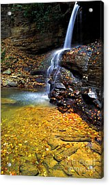 Holly River State Park Upper Falls Acrylic Print by Thomas R Fletcher