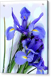Iris -- Pretty In Purple-1 Acrylic Print