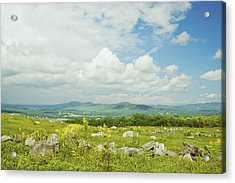 Large Blueberry Field With Mountains And Blue Sky In Maine Acrylic Print