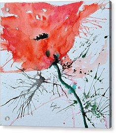 Lonely Poppy Acrylic Print by Ismeta Gruenwald