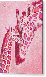 Loving Pink Giraffes Acrylic Print
