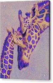 Loving Purple Giraffes Acrylic Print