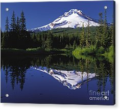 Acrylic Print featuring the photograph  Mount Hood Oregon  by Paul Fearn