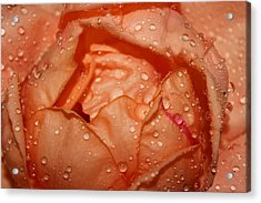 Orange Dream Acrylic Print by Julia Fine Art And Photography