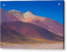 Painted Atacama Acrylic Print