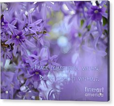 Peace Comes From Within Acrylic Print by Olga Hamilton
