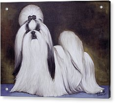 Acrylic Print featuring the painting  Pretty Showdog Shih Tzu by Melinda Saminski