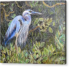 Acrylic Print featuring the painting  Ptg  Blue Heron by Judy Via-Wolff