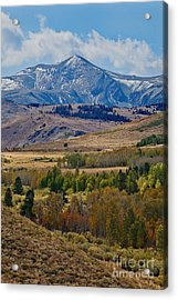 Acrylic Print featuring the photograph  Sierras Mountains by Mae Wertz