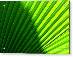 Simply Green Acrylic Print by Michelle Meenawong