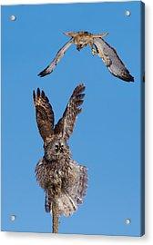 Sky Battle Acrylic Print by Mircea Costina Photography