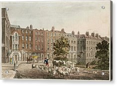 Soho Square, With Cattle         Date Acrylic Print by Mary Evans Picture Library
