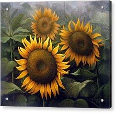 Sunflower 4 Acrylic Print