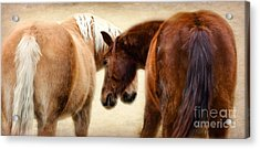 The Love Dance Acrylic Print by Peggy Franz