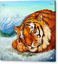 Acrylic Print featuring the painting  Tiger Sleeping In Snow by Bob and Nadine Johnston
