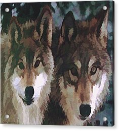 Together Forever Wolves Acrylic Print by Debra     Vatalaro