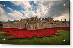 Tower Of London Remembers.  Acrylic Print