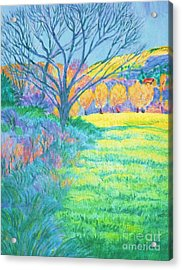 Tree In Field Painting Acrylic Print by Annie Gibbons
