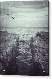 Vermont Lake Champlain Shoreline Black And White Acrylic Print by Andy Gimino