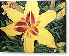 Yellow Lily Acrylic Print by Sharon Duguay