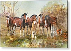 Acrylic Print featuring the digital art  Yesterdays Reflection by Trudi Simmonds
