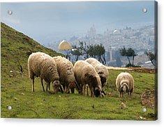 003 Jerusalem Acrylic Print by Alex Kolomoisky
