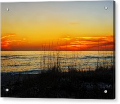 Sunset And Sea Oats On The Florida Gulf Coast Acrylic Print by Frank J Benz