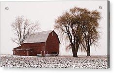 020213-57   Prairie Winter IIi Acrylic Print by Mike Davis