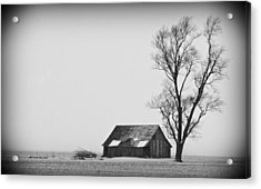 020213-73   Prairie Winter Acrylic Print by Mike Davis