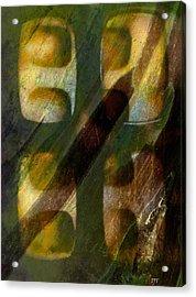 0359 Acrylic Print by I J T Son Of Jesus