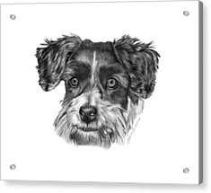 Acrylic Print featuring the drawing 040 - Blue by Abbey Noelle
