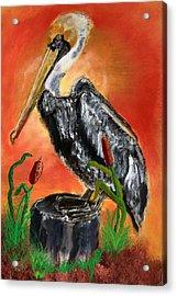 082914 Pelican Louisiana Pride Acrylic Print