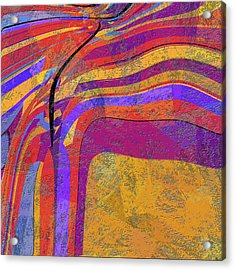 0871 Abstract Thought Acrylic Print by Chowdary V Arikatla