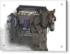091614 Color Pencil Mule And Carriage Acrylic Print by Garland Oldham