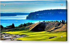 #14 At Chambers Bay Golf Course - Location Of The 2015 U.s. Open Tournament Acrylic Print by David Patterson