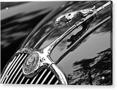 1955 Jaguar Xk 150 Hood Ornament Acrylic Print