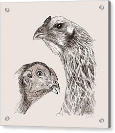 51. Game Hens Acrylic Print