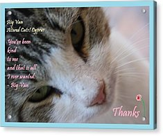 A Big Van Thanks Altered Cats Cyprus Acrylic Print