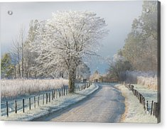 A Frosty Morning Acrylic Print by Chris Moore