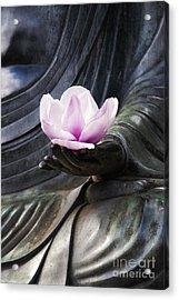 A Gift  Acrylic Print by Tim Gainey